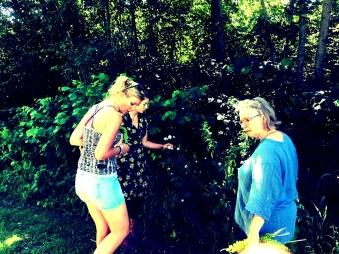 wildplukken in het bos (2)